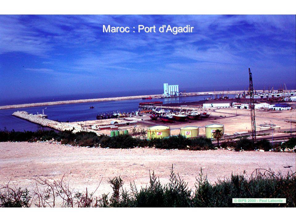 Tunisie : Djerba, les panonceaux des innombrables hôtels de la côte