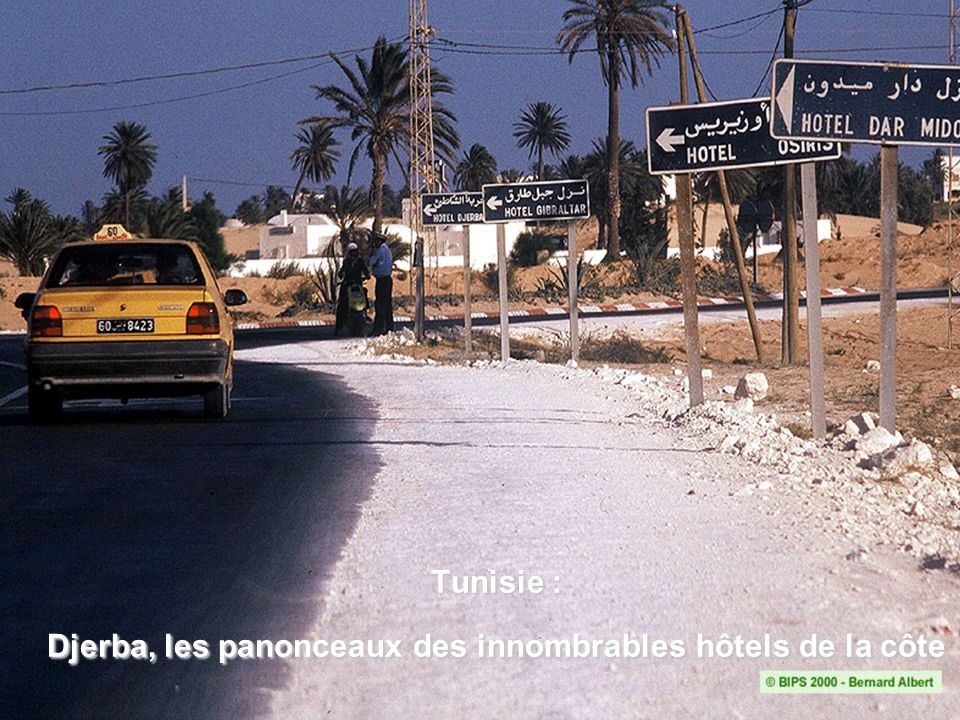 Tunisie : Oasis à Midès Représentation traditionnelle de l oasis.