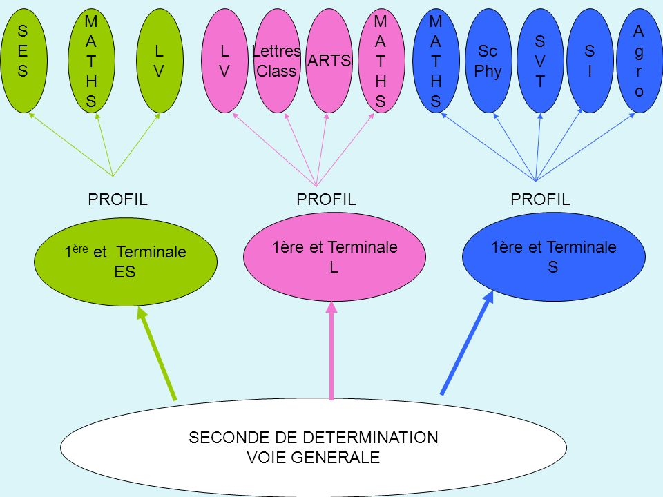 SECONDE DE DETERMINATION VOIE GENERALE 1 ère et Terminale ES 1ère et Terminale L 1ère et Terminale S PROFIL SESSES LVLV Lettres Class ARTS MATHSMATHS