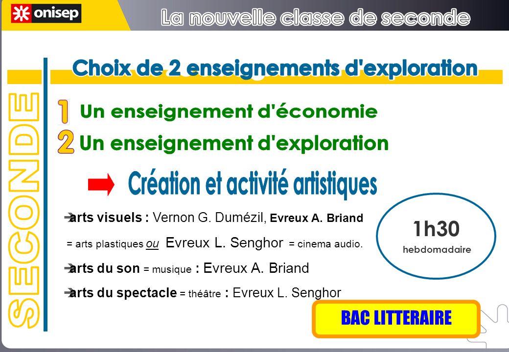 arts visuels : Vernon G. Dumézil, Evreux A. Briand = arts plastiques ou Evreux L. Senghor = cinema audio. arts du son = musique : Evreux A. Briand art