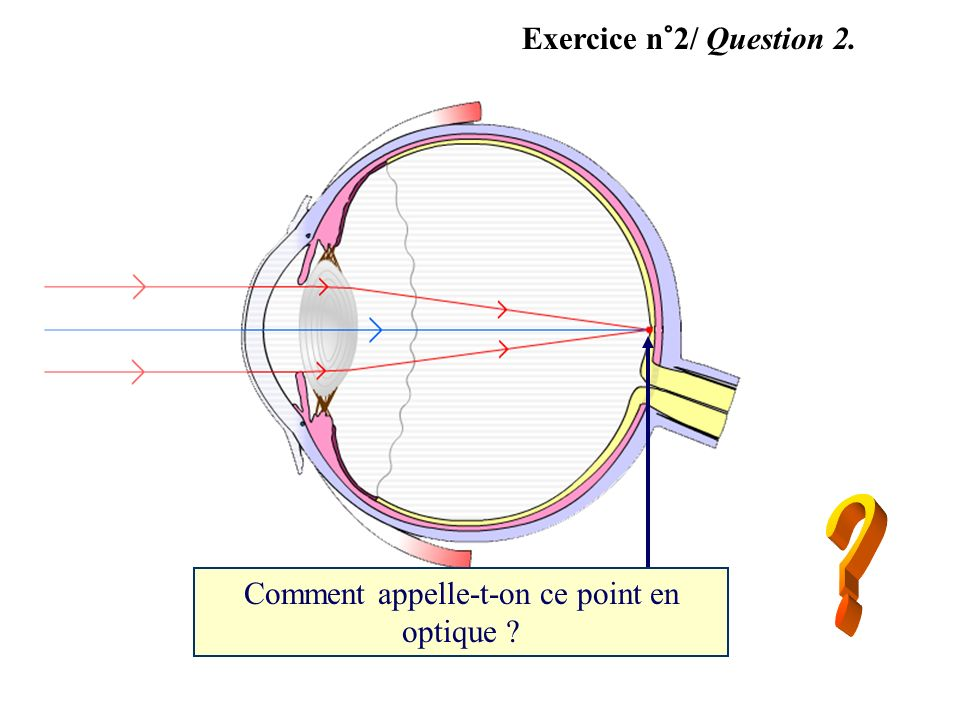 Exercice n°2/ Question 2. Comment appelle-t-on ce point en optique ?