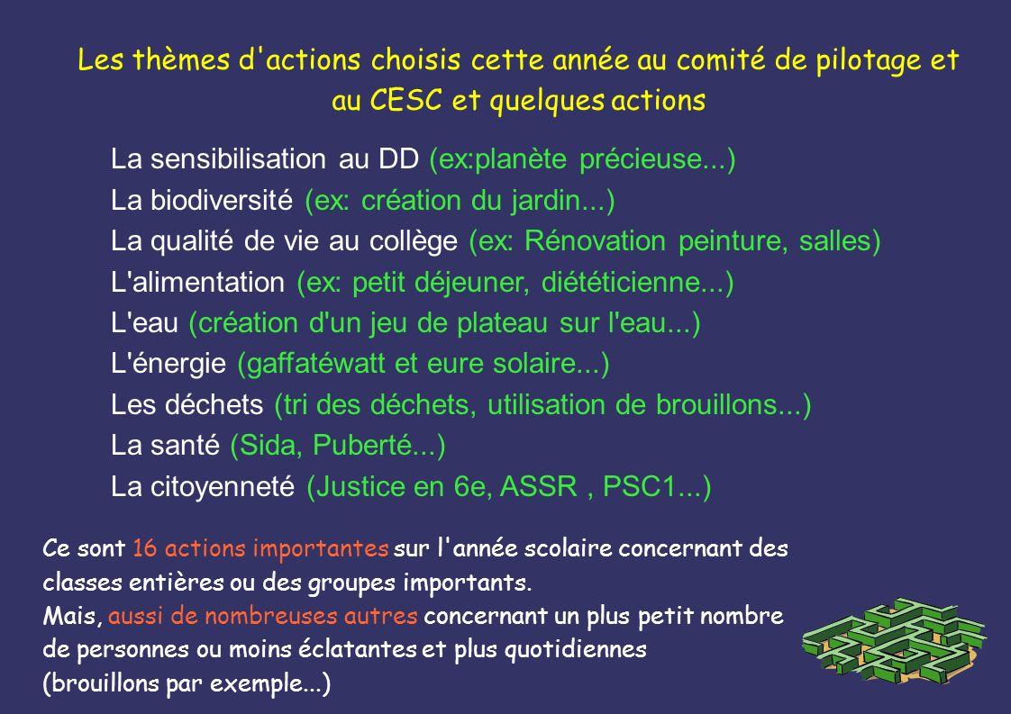 Les thèmes d'actions choisis cette année au comité de pilotage et au CESC et quelques actions La sensibilisation au DD (ex:planète précieuse...) La bi