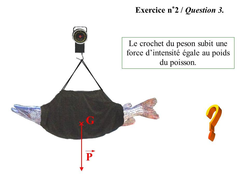 Exercice n°2 / Question 3. En commerce, sont vendus des pesons à poissons : ils sont surtout utilisés par les pêcheurs. Le sac permet de suspendre le
