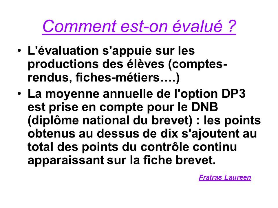 Comment est-on évalué ? L'évaluation s'appuie sur les productions des élèves (comptes- rendus, fiches-métiers….) La moyenne annuelle de l'option DP3 e