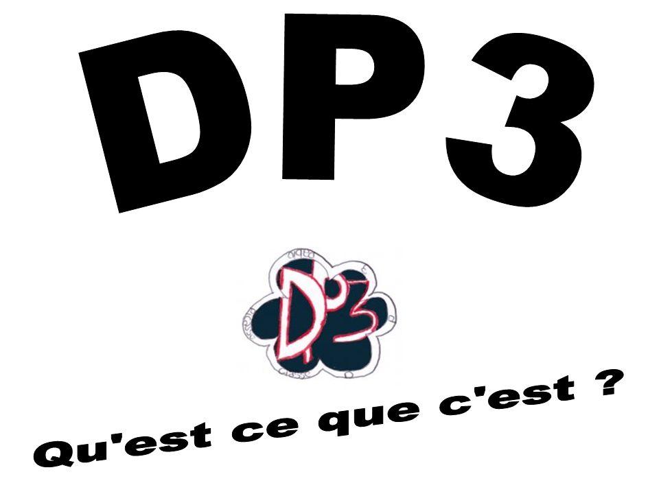 Quest ce que la DP3 .DP3 veut dire découverte professionnelle 3 heures.