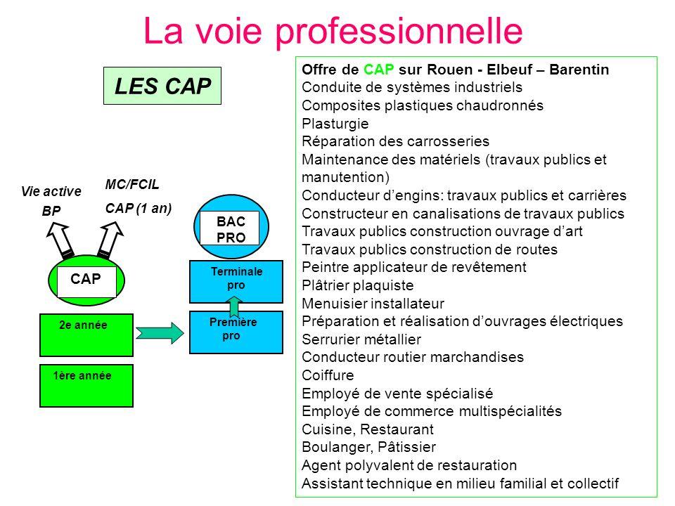 La voie professionnelle 2e année 1ère année CAP Première pro Terminale pro BAC PRO Offre de CAP sur Rouen - Elbeuf – Barentin Conduite de systèmes ind