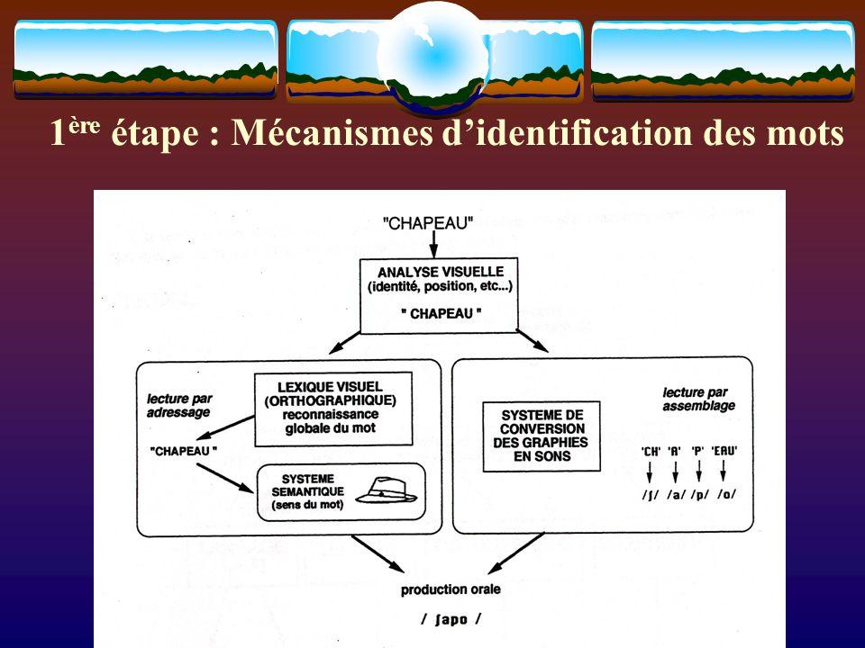 1 ère étape : Mécanismes didentification des mots