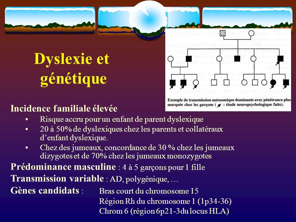 Dyslexie et génétique Incidence familiale élevée Risque accru pour un enfant de parent dyslexique 20 à 50% de dyslexiques chez les parents et collatéraux denfant dyslexique.