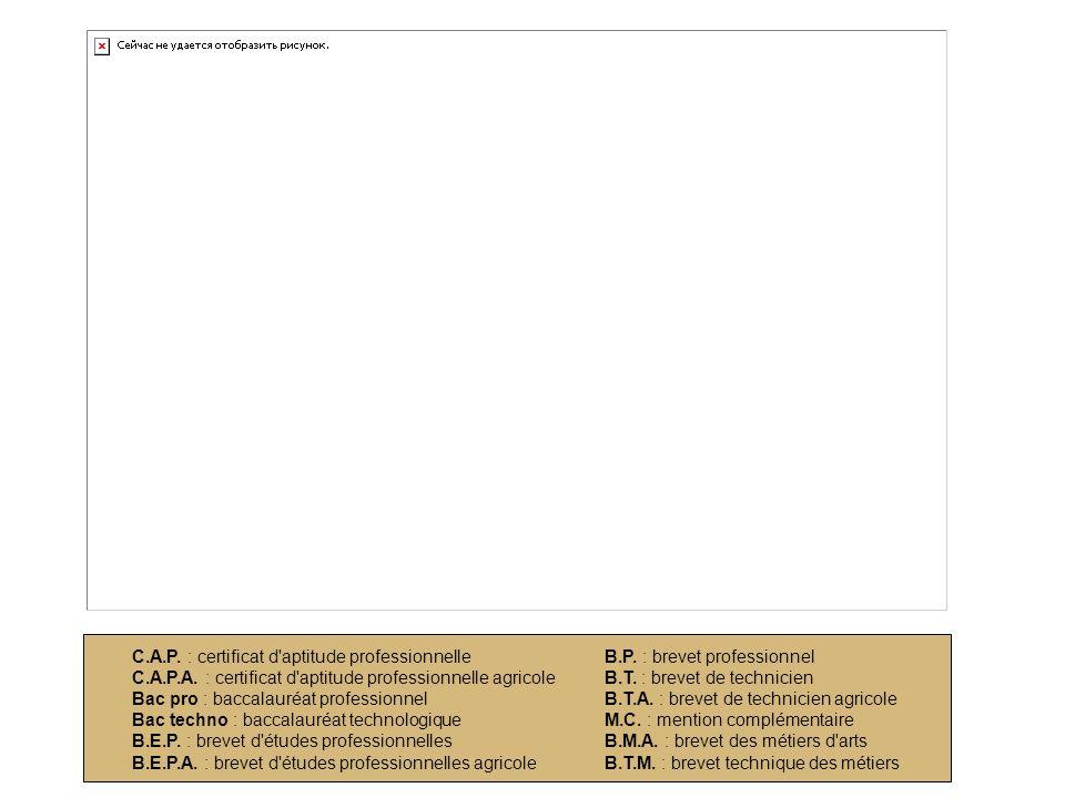 C.A.P. : certificat d'aptitude professionnelle C.A.P.A. : certificat d'aptitude professionnelle agricole Bac pro : baccalauréat professionnel Bac tech