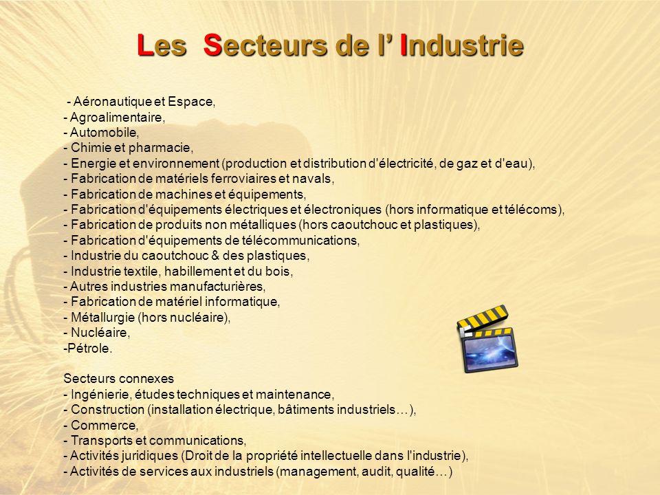 - Aéronautique et Espace, - Agroalimentaire, - Automobile, - Chimie et pharmacie, - Energie et environnement (production et distribution d'électricité