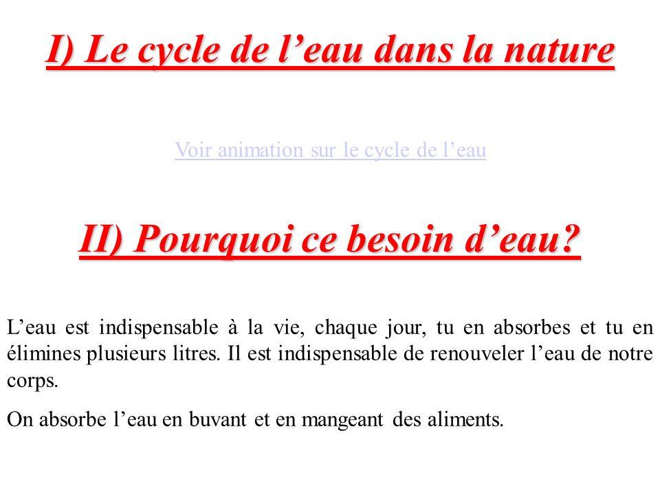 I) Le cycle de leau dans la nature Voir animation sur le cycle de leau II) Pourquoi ce besoin deau? Leau est indispensable à la vie, chaque jour, tu e