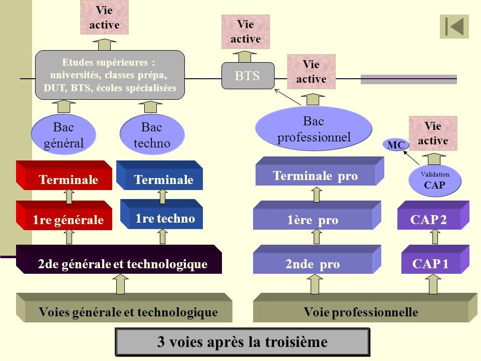 3 voies après la troisième Voies générale et technologiqueVoie professionnelle 2de générale et technologique 1re générale Terminale Bac général Bac te