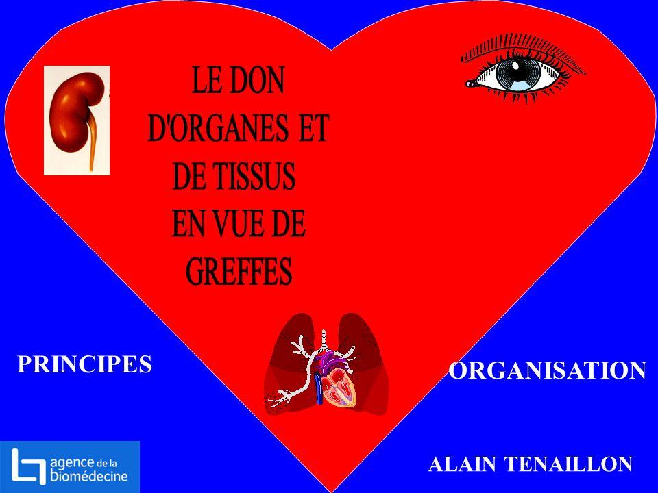 PRINCIPES ORGANISATION ALAIN TENAILLON