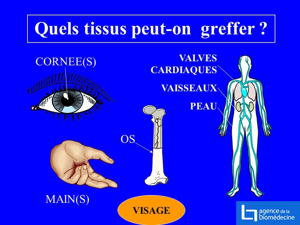 Quels tissus peut-on greffer ? CORNEE(S) OS VALVES CARDIAQUES VAISSEAUX PEAU MAIN(S) VISAGE