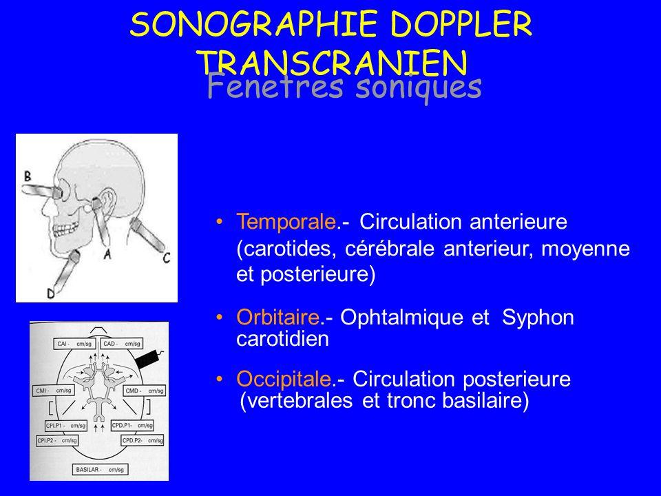 Temporale.- Circulation anterieure (carotides, cérébrale anterieur, moyenne et posterieure) Occipitale.- Circulation posterieure (vertebrales et tronc
