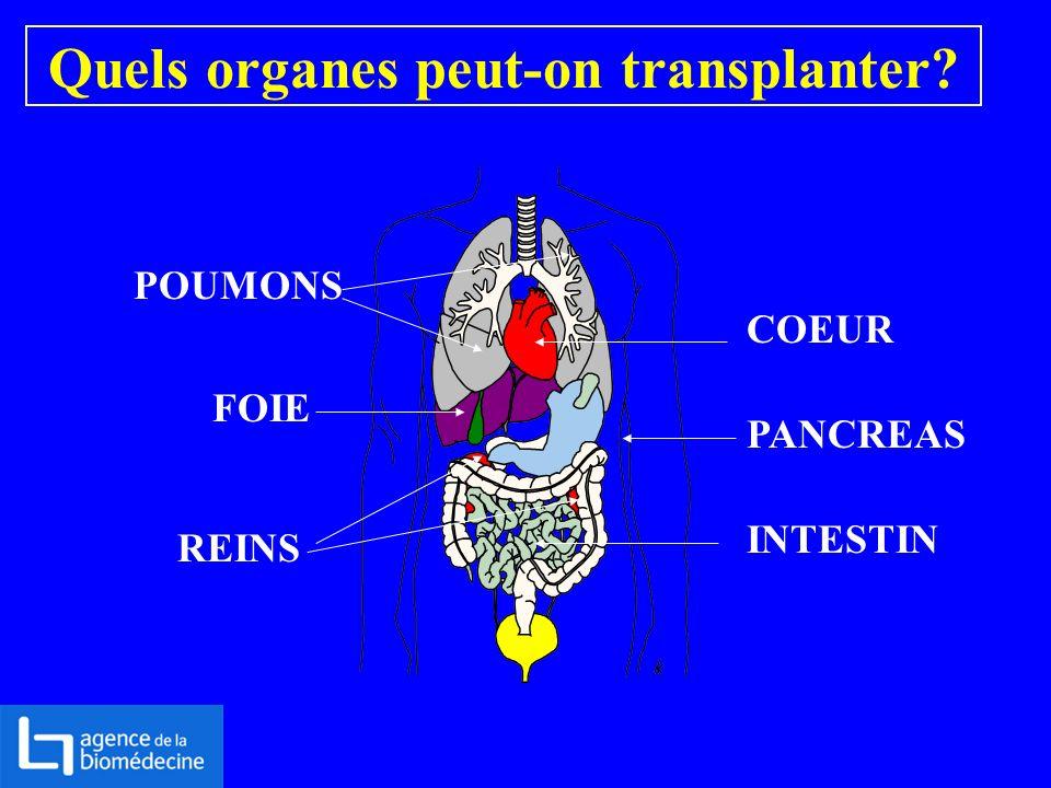Quels organes peut-on transplanter? POUMONS COEUR FOIE REINS PANCREAS INTESTIN