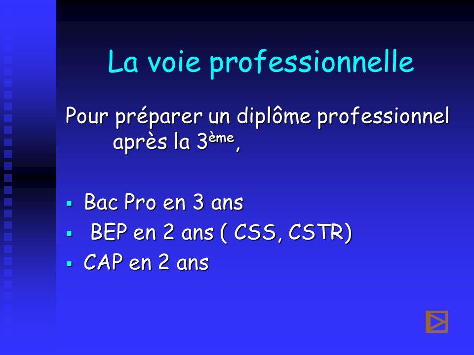 La voie professionnelle Pour préparer un diplôme professionnel après la 3 ème, Bac Pro en 3 ans Bac Pro en 3 ans BEP en 2 ans ( CSS, CSTR) BEP en 2 an