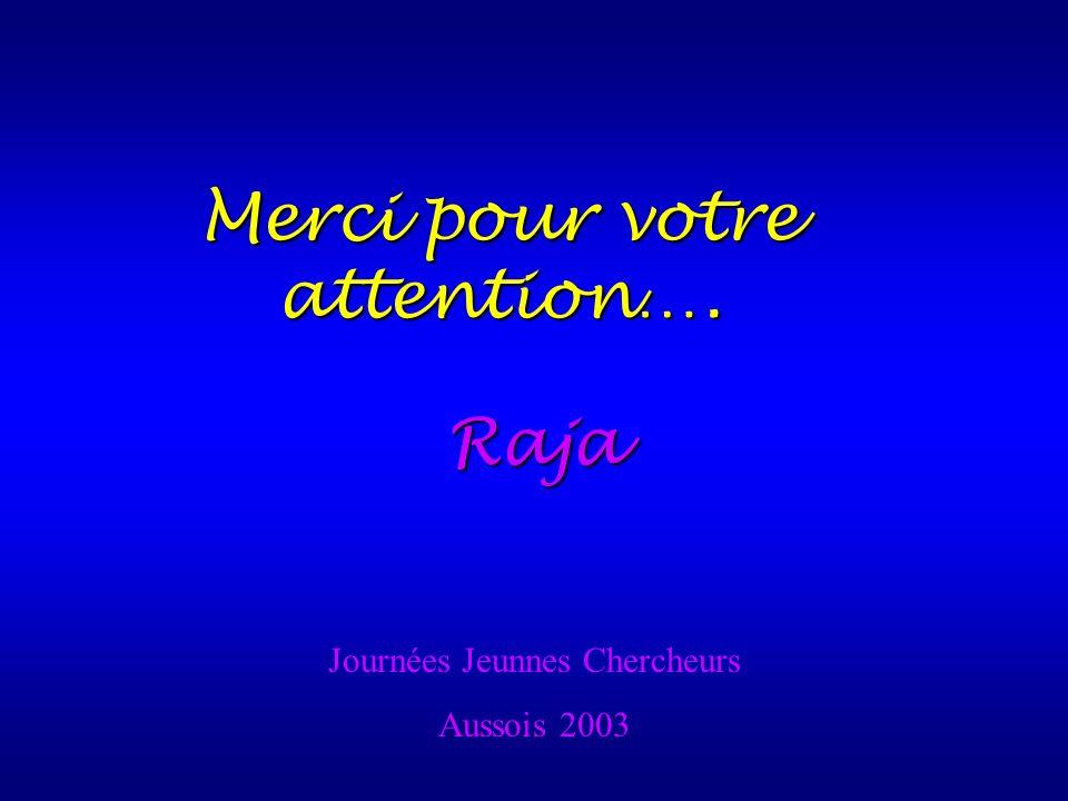Merci pour votre attention…. Journées Jeunnes Chercheurs Aussois 2003 Raja