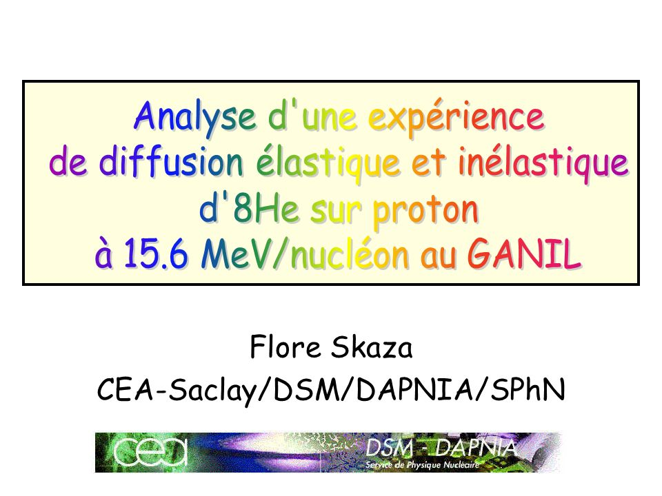 Flore Skaza CEA-Saclay/DSM/DAPNIA/SPhN