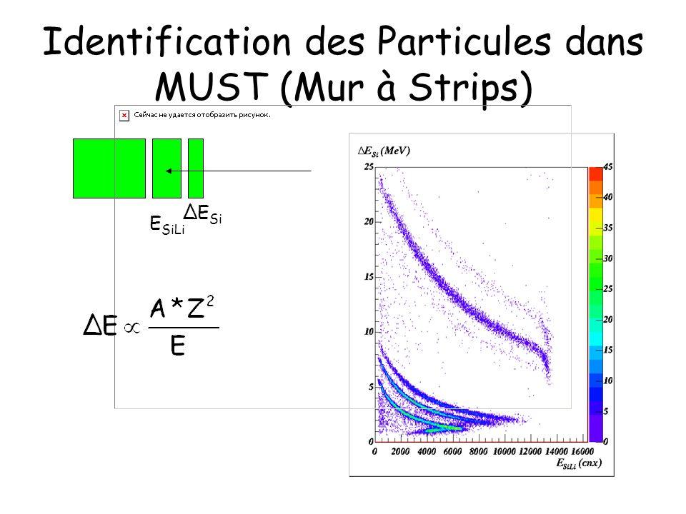 Identification des Particules dans MUST (Mur à Strips) ΔE Si E SiLi
