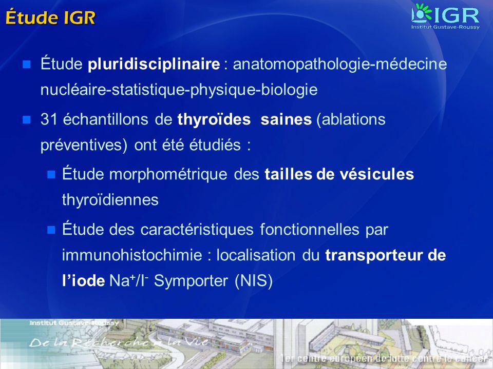 Étude pluridisciplinaire : anatomopathologie-médecine nucléaire-statistique-physique-biologie 31 échantillons de thyroïdes saines (ablations préventiv