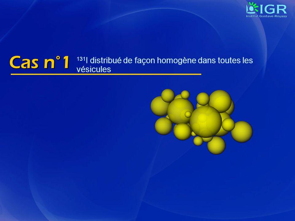 Cas n°1 131 I distribué de façon homogène dans toutes les vésicules