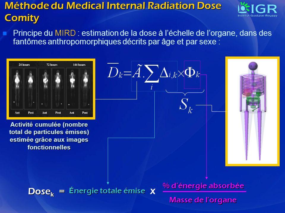 Méthode du Medical Internal Radiation Dose Comity Principe du MIRD : estimation de la dose à léchelle de lorgane, dans des fantômes anthropomorphiques