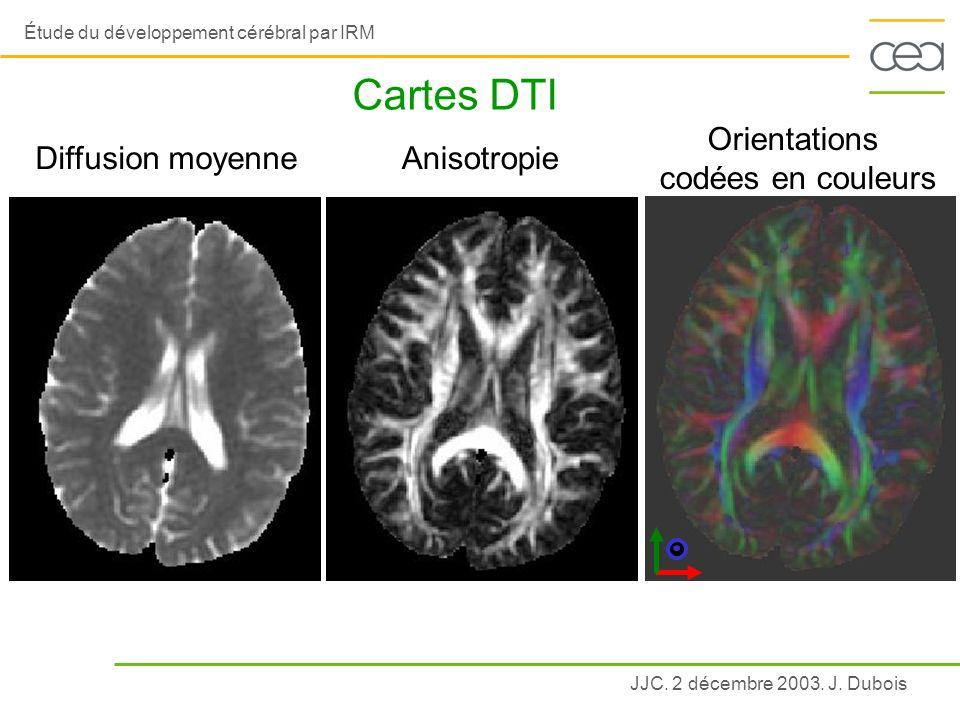 JJC. 2 décembre 2003. J. Dubois Étude du développement cérébral par IRM Cartes DTI Diffusion moyenneAnisotropie Orientations codées en couleurs