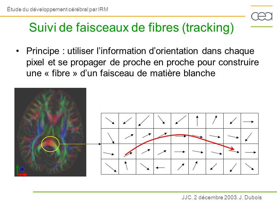 JJC. 2 décembre 2003. J. Dubois Étude du développement cérébral par IRM Suivi de faisceaux de fibres (tracking) Principe : utiliser linformation dorie