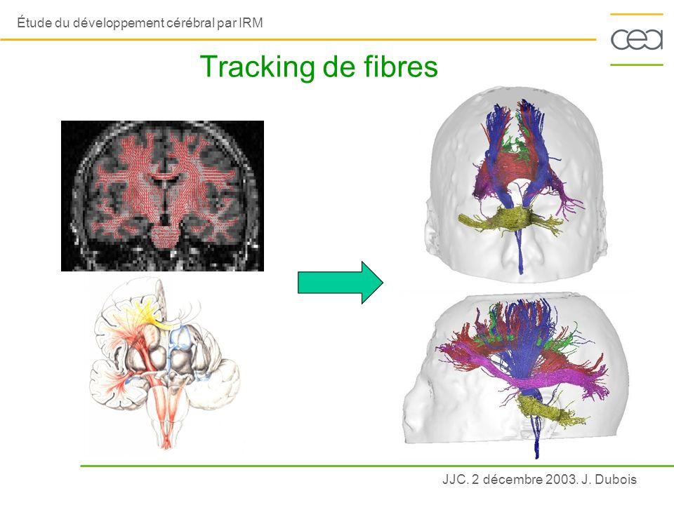 JJC. 2 décembre 2003. J. Dubois Étude du développement cérébral par IRM Tracking de fibres