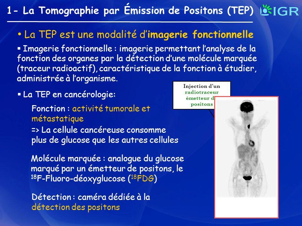 1- La Tomographie par Émission de Positons (TEP) Imagerie fonctionnelle : imagerie permettant lanalyse de la fonction des organes par la détection dun