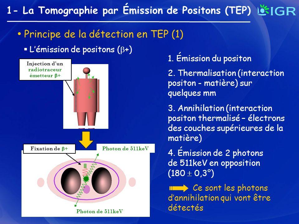 1- La Tomographie par Émission de Positons (TEP) Principe de la détection en TEP (2) Injection dun radiotraceur émetteur + Ligne de coïncidence Détection en coïncidence de lignes de réponse (LOR) Ligne de Réponse (LOR) La détection des photons dannihilation Ligne de coïncidence = Fenêtre temporelle (quelques ns) + fenêtre spectrale (350 à 650 keV) Émission en opposition des 2 photons dannihilation Chaque LOR contient le nombre de positons émis sur cette ligne Anneau de détection