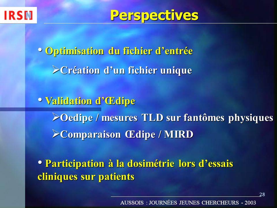 28 Perspectives Optimisation du fichier dentrée Optimisation du fichier dentrée Création dun fichier unique Création dun fichier unique Validation dŒd
