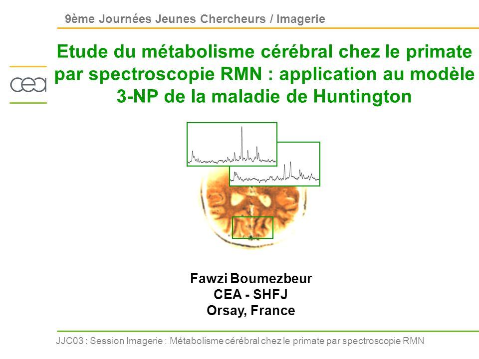 JJC03 : Session Imagerie : Métabolisme cérébral chez le primate par spectroscopie RMN Introduction Spins nucléaires B0B0 Excitation radiofréquence Signal de précession libre raie spectrale pixel dans une image La Résonance Magnétique Nucléaire en bref Transformée de Fourier