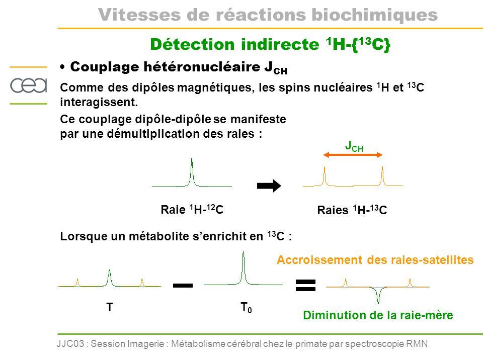 JJC03 : Session Imagerie : Métabolisme cérébral chez le primate par spectroscopie RMN Détection indirecte 1 H-{ 13 C} Couplage hétéronucléaire J CH Co