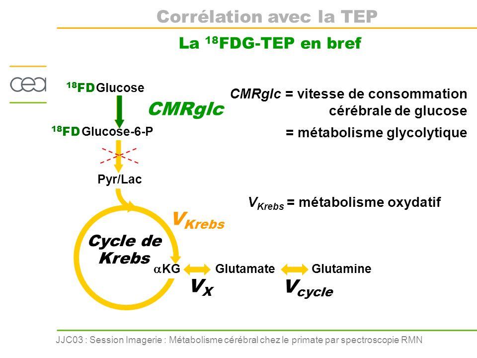 JJC03 : Session Imagerie : Métabolisme cérébral chez le primate par spectroscopie RMN Corrélation avec la TEP La 18 FDG-TEP en bref KG Glutamate Gluta