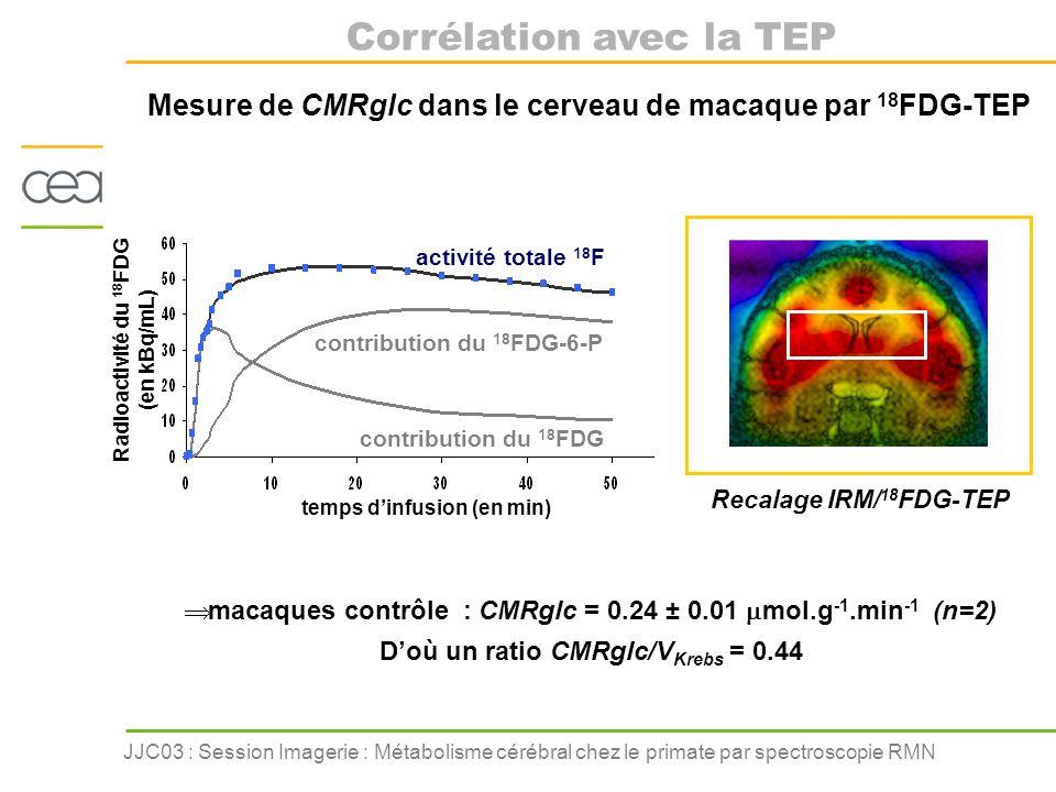 JJC03 : Session Imagerie : Métabolisme cérébral chez le primate par spectroscopie RMN Mesure de CMRglc dans le cerveau de macaque par 18 FDG-TEP macaq