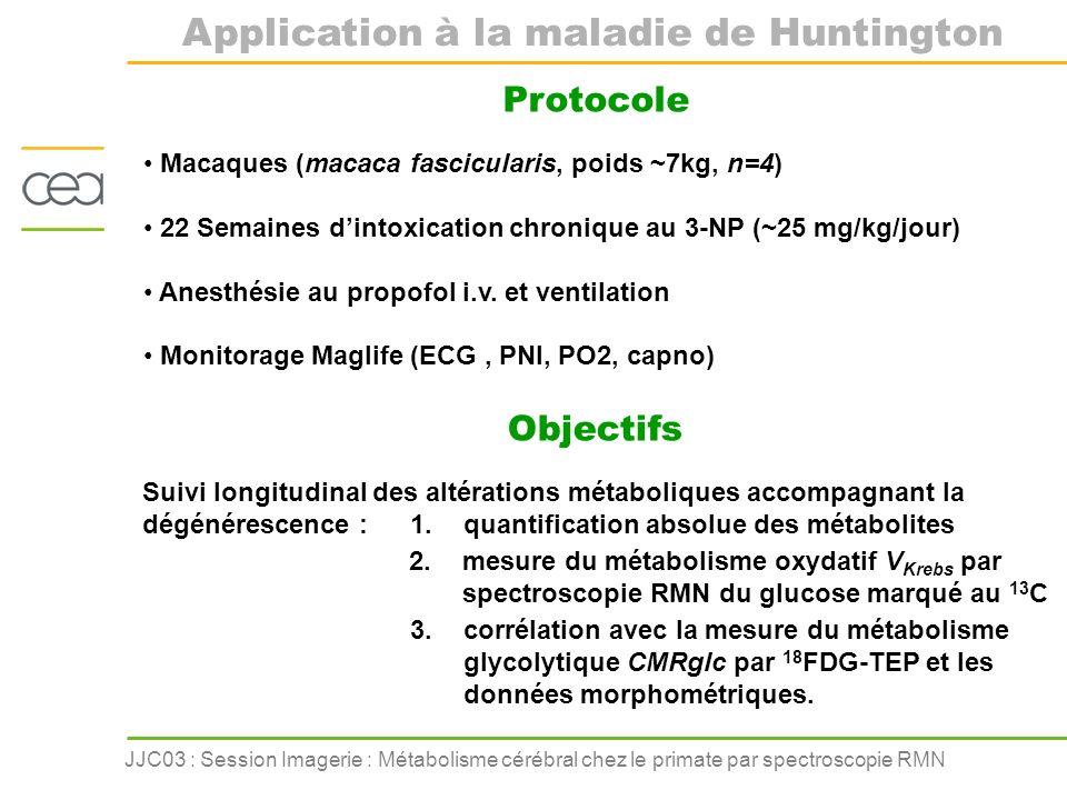 JJC03 : Session Imagerie : Métabolisme cérébral chez le primate par spectroscopie RMN Protocole Macaques (macaca fascicularis, poids ~7kg, n=4) 22 Sem