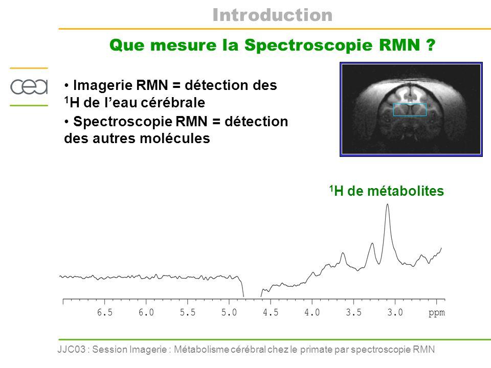 JJC03 : Session Imagerie : Métabolisme cérébral chez le primate par spectroscopie RMN Introduction Lenvironnement technique de la RMN Programmation de séquence Sondes radiofréquences Hardware Electronique Mais aussi : du matériel de stimulation, de monitorage, etc… Aimant 3 Tesla, corps entier avec gradients et shims performants Informatique Traitement des spectres Traitement des images 3.53.02.5 2.0 1.5 tChotCrGluNAA tCho tCr Glu NAA ppm