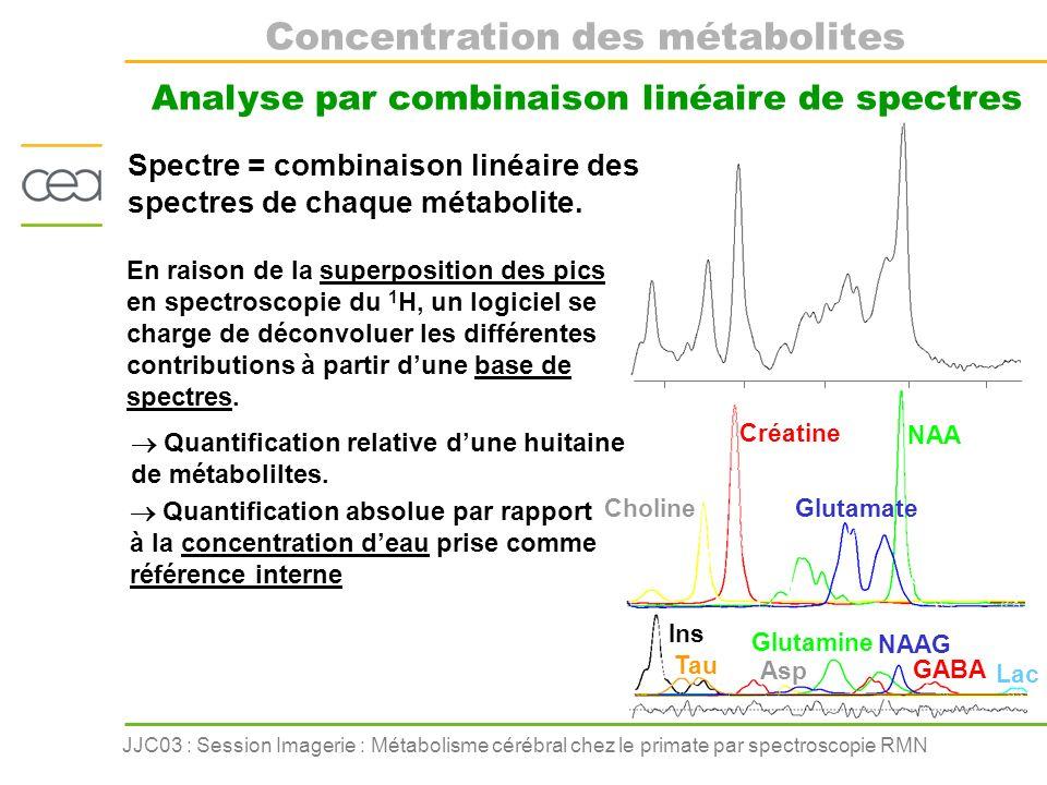 JJC03 : Session Imagerie : Métabolisme cérébral chez le primate par spectroscopie RMN Modèle dintoxication à lacide 3-NP Le modèle primate de la MH ADP ATP H+H+H+H+ H+H+H+H+ NADH NAD Cycle de Krebs SDH SDH Le cycle de Krebs = synthèse oxydative dATP Mitochondrie Acétyl CoA Glucose Modèle de neurodégénérescence sélective du striatum 3-NP inhibition Application à la maladie de Huntington