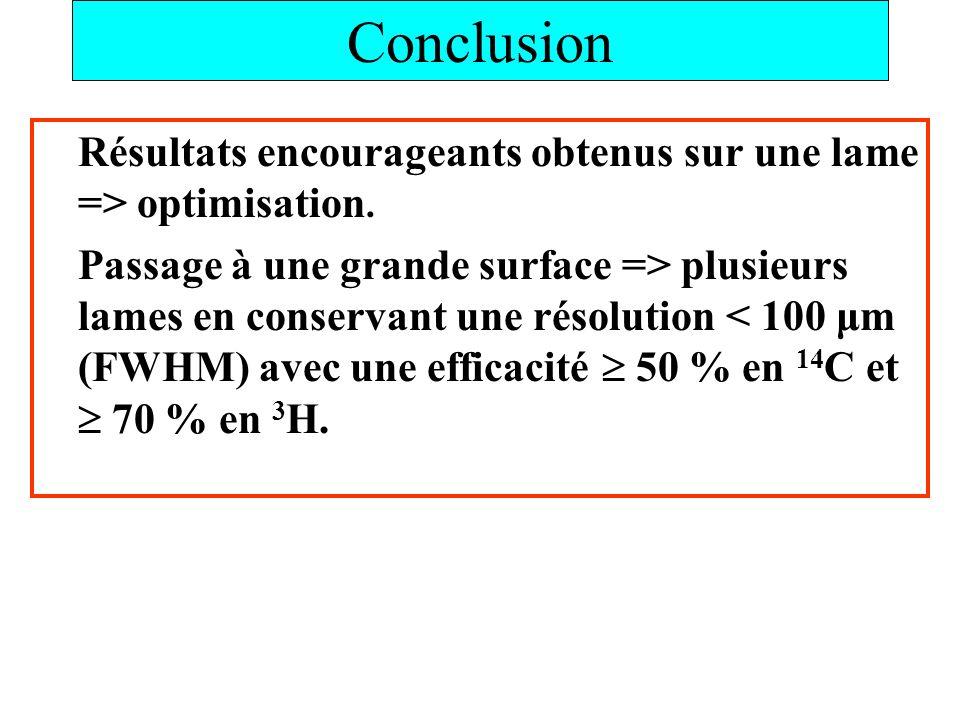 Conclusion Résultats encourageants obtenus sur une lame => optimisation. Passage à une grande surface => plusieurs lames en conservant une résolution