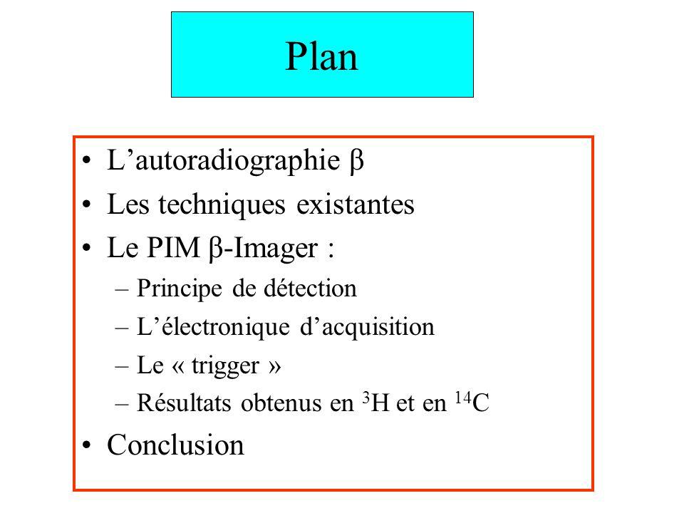 Plan Lautoradiographie β Les techniques existantes Le PIM β-Imager : –Principe de détection –Lélectronique dacquisition –Le « trigger » –Résultats obt