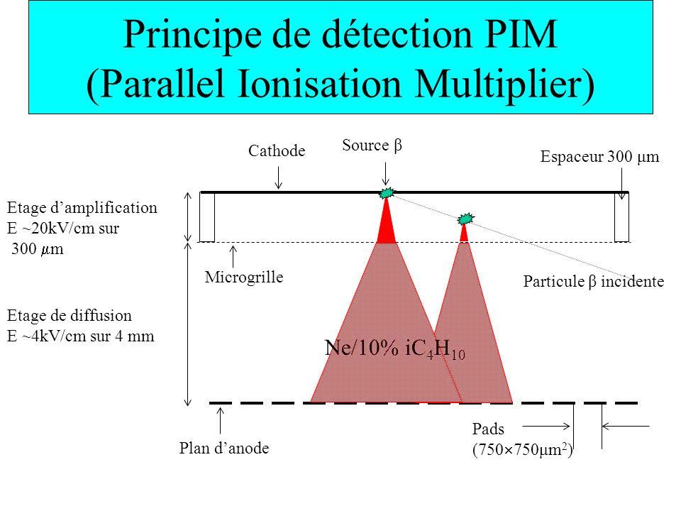 Principe de détection PIM (Parallel Ionisation Multiplier) Etage de diffusion E ~4kV/cm sur 4 mm Cathode Source β Particule β incidente Espaceur 300 μ