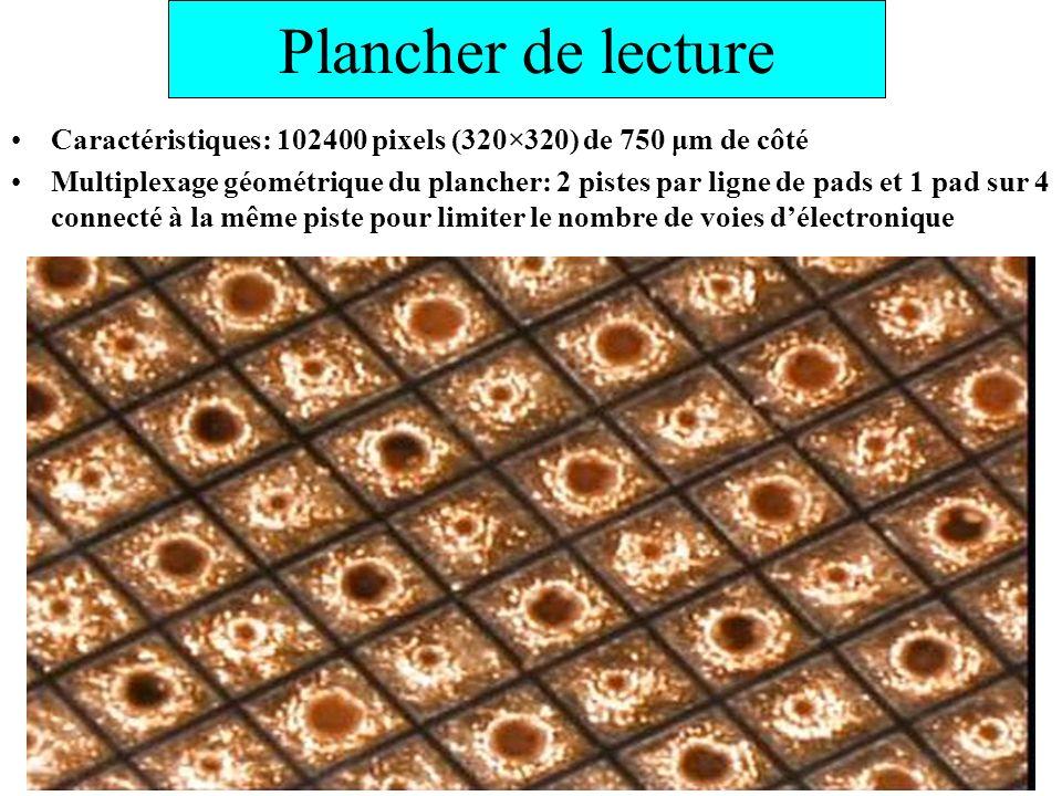 Plancher de lecture Caractéristiques: 102400 pixels (320×320) de 750 μm de côté Multiplexage géométrique du plancher: 2 pistes par ligne de pads et 1