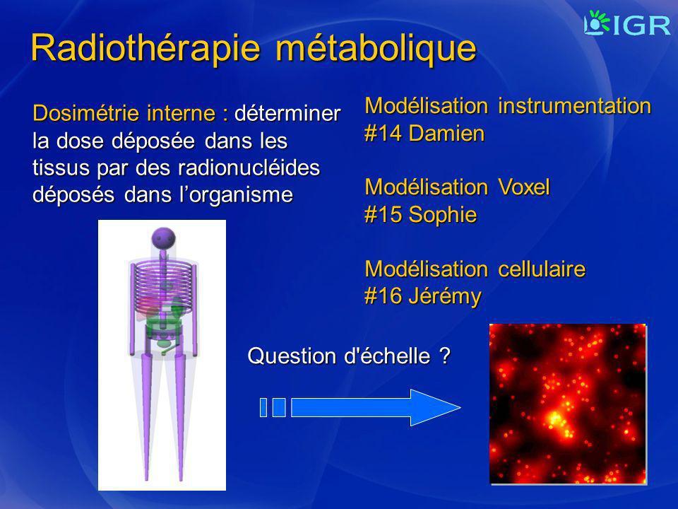 Radiothérapie métabolique Dosimétrie interne : déterminer la dose déposée dans les tissus par des radionucléides déposés dans lorganisme Question d'éc
