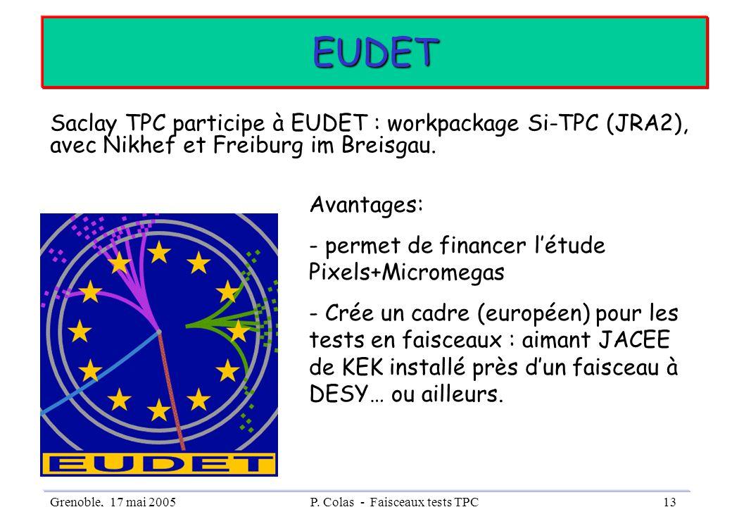 Grenoble, 17 mai 2005P. Colas - Faisceaux tests TPC13 EUDET Saclay TPC participe à EUDET : workpackage Si-TPC (JRA2), avec Nikhef et Freiburg im Breis