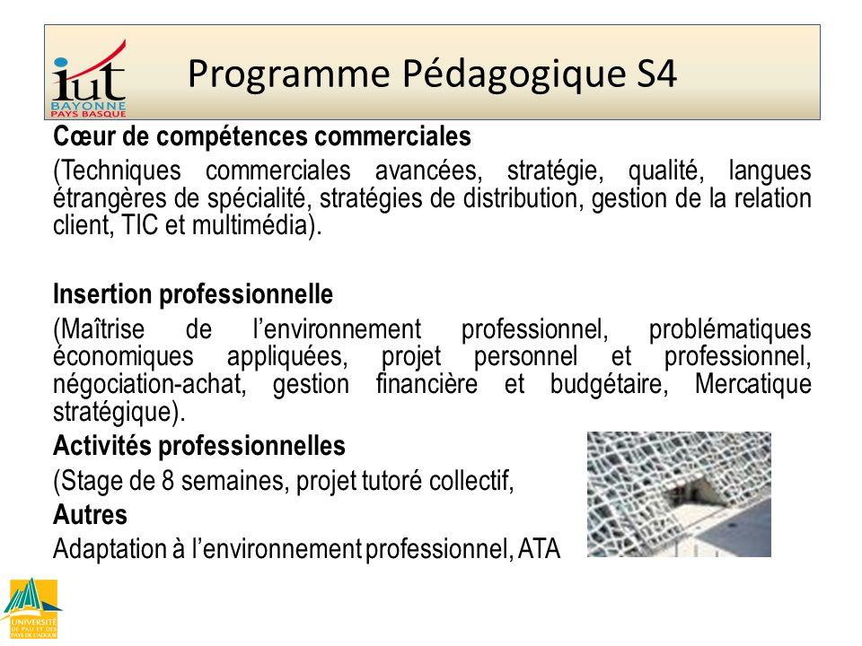 Cœur de compétences commerciales (Techniques commerciales avancées, stratégie, qualité, langues étrangères de spécialité, stratégies de distribution,