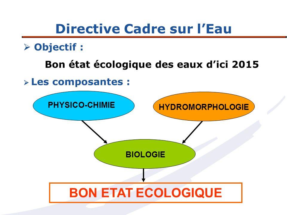 Directive Cadre sur lEau Objectif : Bon état écologique des eaux dici 2015 Les composantes : PHYSICO-CHIMIE BON ETAT ECOLOGIQUE BIOLOGIE HYDROMORPHOLO