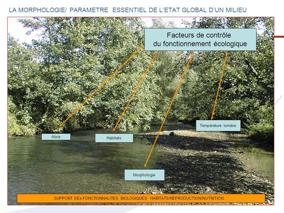 LA MORPHOLOGIE/ PARAMETRE ESSENTIEL DE LETAT GLOBAL DUN MILIEU Température lumière Abris Morphologie Habitats Facteurs de contrôle du fonctionnement é