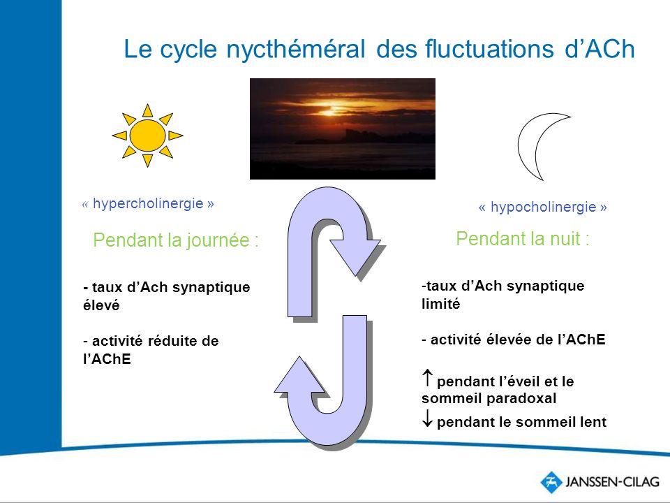 Le cycle nycthéméral des fluctuations dACh Pendant la journée : - taux dAch synaptique élevé - activité réduite de lAChE Pendant la nuit : -taux dAch synaptique limité - activité élevée de lAChE pendant léveil et le sommeil paradoxal pendant le sommeil lent « hypercholinergie » « hypocholinergie »